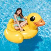 Hip_Hip_Hooray_Yellow_Duck_2